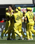 WC 2015 Final : Australia crush New Zealand, claim historic fifth Cup