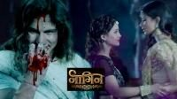 Shivanya and Sesha kill nevla Kabir to save Ritik in 'Naagin' on colours
